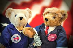 PAWS for Politics! #VermontTeddyBear #TeddyBear #Politics