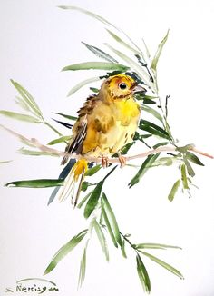 Yellowhammer Original watercolor painting 12 X 9 by ORIGINALONLY, $25.00