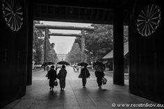 Umbrellas / Tokyo