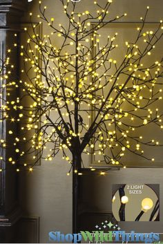 Led Tree 8 Feet Tall Indoor Outdoor 2 Sizes Of 600 Sphere Lights Warm Whiteour High Quality Features In A