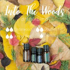 I literally feel like I am walking through a forest with this Into The Woods diffuser blend. It makes me want to dress up as Little Red Riding Hood and go on an adventure in the fresh air.