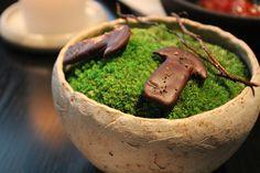NOMA TOKYO 肉桂と発酵キノコ ノーマ