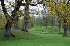 Burial mounds, Borre by AstridWestvang, via Flickr