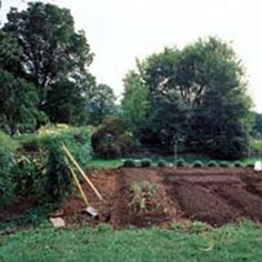 8 Steps for Making Better Garden Soil - Organic Gardening - MOTHER EARTH NEWS