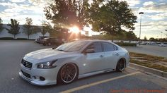 Nissan Coupe, Lux Cars, Nissan Maxima, Nissan Sentra, Amazing Cars, Snakes, Exotic Cars, Custom Cars, Motors