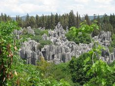 Shilin Stone Forest China