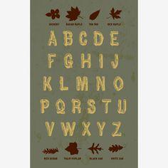 Font Design ABC