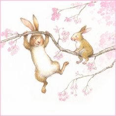 Bunnies by Petra Brown