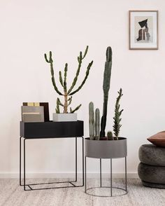 We have one of the ferm LIVING plant boxes in our showroom. It's crafted from powder-coated metal and is so multi-functional with lots of styling options Dyi, Plant Box, Plant Table, Office Plants, Décor Boho, Warm Grey, Office Interior Design, Soft Furnishings, Interior Inspiration