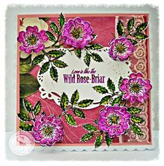 Dream Laine: Wild Rose - Briar Stamp and Die. Spectrum Aqua markers  Primary - Red Violet  Essentials - Olive, Moss  Floral - Meadow, Bud Green, Blossom  Nature - Evergreen