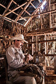 Traditional Cigar factory . Cuba