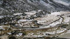 Il torrente Poja in Val Salarno, dove sono presenti in estate fino a una trentina di stambecchi (www.uomoeterritoriopronatura.it)