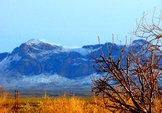 Manzano Mts NM 2008