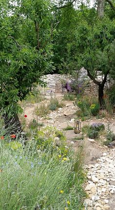 The L'Occitan Garden. A recreation of Provence. Rhs Flower Show, Provence, Garden Ideas, Chelsea, Country Roads, London, Flowers, Landscaping Ideas, Backyard Ideas