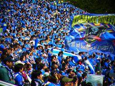 I love football, montedio yamagata !!!