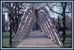 Candy Cane Lane graces Bronson Park every year in downtown #Kalamazoo! Join the annual tree-lighting celebration, and walk the park after dark during the holiday season to see the park sparkle in its splendor!