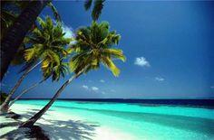 Gorgeous tropical island beach paradise