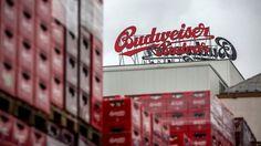 A produtora de cerveja Budejovicky Budvar ganhou em tribunal contra a Anheuser-Busch InBev (ABI) o direito de comercializar a marca em Portugal. Em causa está a detenção e o direito de vender cerveja no país sob a marca Budweiser.