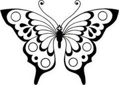 Image Result For Butterfly Pictures  Butterfly Wings