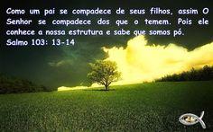 Mensagem do Dia: Bom é ter esperança, e aguardar em silêncio a salv...