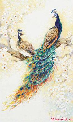Cross Stitch Peacock http://www.dimshop.ru/riolis/100-029/