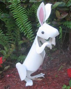 ANIMALS - Rabbit  (PHOTO ONLY)