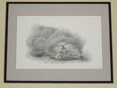 Vintage Cat Charcoal Drawing by Virginia Miller by designfrills, $32.00