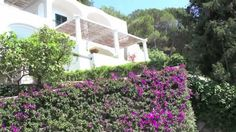 Virtual tour of Isle of Capri, Italy and Villa For Sale with pool