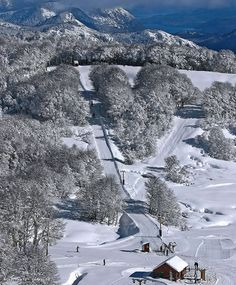Lugares donde practiqué ski. Chapelco.San Martín de los Andes. Argentina