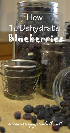 How to Dehydrate Blueberries ~ Can't wait to pick a bunch of fresh local blueberries & dehydrate them! - for instant porridge Dried Blueberries, Dried Fruit, Canning Food Preservation, Preserving Food, Ni Cru Ni Cuit, Canned Food Storage, Dehydrated Food, Dehydrator Recipes, Snacks