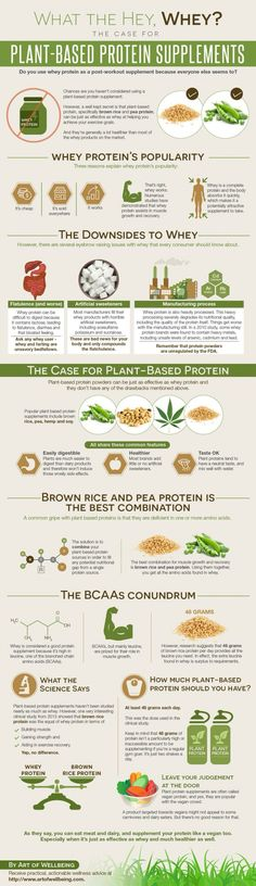 artofwellbeing.com makes a great case about plant based protein supplements.