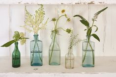 The glassy beauty of antique medicine bottles | Homes and Antiques