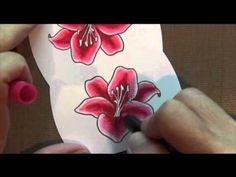 Stargazer Lily Card with great stamp-a-ma-gig tip Card Tags, Greeting Card, Sister Cards, Stargazer Lilies, Do It Yourself Crafts, Colouring Techniques, Copics, Hero Arts, Copic Markers