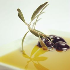 Aceite de oliva, la grasa alimentaria más saludable. Olive oil is the healthier dietary fat.