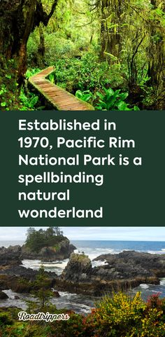 Established in 1970 Pacific Rim National Park is a spellbinding natural wonderland Backpacking Trails, Hiking Spots, Canada National Parks, Parks Canada, Places To Travel, Places To See, Solo Travel Europe, West Coast Trail, Pacific Rim