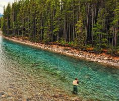 Fly Fishing in a Glacial Stream