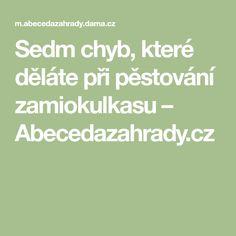 Sedm chyb, které děláte při pěstování zamiokulkasu – Abecedazahrady.cz