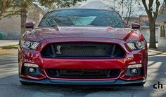 2015 Mustang Shelby   2015 Shelby Mustang GT500 Super Snake Imagined