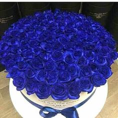 The million roses blue Flower Names, My Flower, Flower Power, Exotic Flowers, Pretty Flowers, Colorful Roses, Billion Roses, Food Bouquet, Box Roses