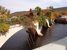 "The Bridge of Flowers in Shelburne Falls, Massachusetts, touted as ""the only one of its kind in the world,"" is a 400-foot long bridge covered in flowers expertly planted to ensure they bloom continuously from April to October.  http://www.atlasobscura.com/places/bridge-flowers#"