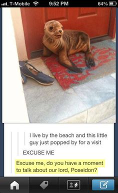 I seriously died both from cute overload and how awesome tumblr constantly is.