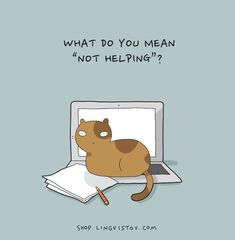 These Silly Comics Prove That Sometimes Animals Just 'Get' You (and Sometimes They Really Don't) - World's largest collection of cat memes and other animals I Love Cats, Cute Cats, Funny Cats, Funny Animals, Cute Animals, Cat Quotes, Animal Quotes, Crazy Cat Lady, Crazy Cats
