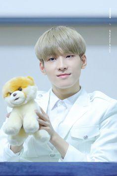 rare sight of wonu with a doggo Woozi, Jeonghan, Won Woo, Tiny Cats, Seventeen Wonwoo, Pledis Entertainment, Seungkwan, K Idols, Boy Groups