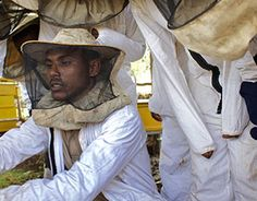 Help Oxfam to train beekeepers http://www.charitychoice.co.uk/blog/christmas-gifts/171