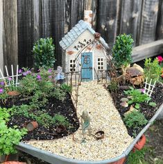 A fairy garden in a rusty vintage wheelbarrow complete with grumpy old gardener. The cast iron sculpture is from range 'The Grumpy Old…