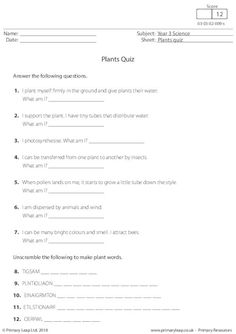 Science: Printable Resources & Free Worksheets for Kids Free Worksheets For Kids, Worksheets For Grade 3, English Worksheets For Kids, Science Worksheets, Science Resources, Ks2 Science, Grade 3 Science, Photosynthesis Worksheet, Cloze Activity