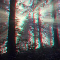 3-D Glasses  needed to see picture properly...  anaglyph. 3-D Art. 3D mystische stimmung im Wald hat folgende Stichwörter: 3D,  3D Fotograf,  3D-Bild.