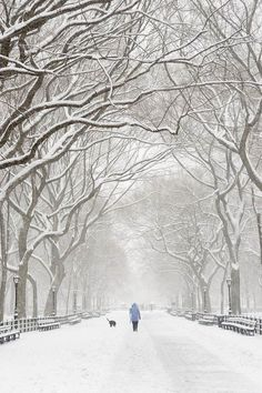 walking through a winter wonderland!