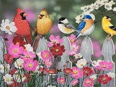 birds on a fence - Google Search