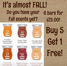 Fall in love with scentsy all again!!!  To order contact me at Kolivas505@gmail.com  or kathysheavenlyscents.scentsy.us